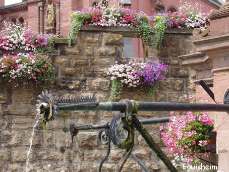 Eguisheim - la fontaine- Photo G.GUYOT