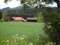 un gite dans les Vosges, proche de Gérardmer